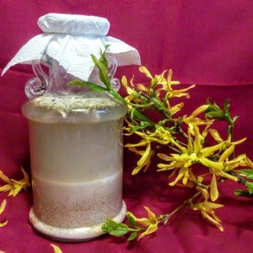 Zakwas na biały barszcz z mąki orkiszowej
