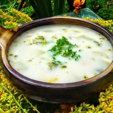 Zupa brokułowa z mleczkiem kokosowym